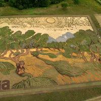 Vincent van Gogh festmény egy 1,2 hektáros mezőn