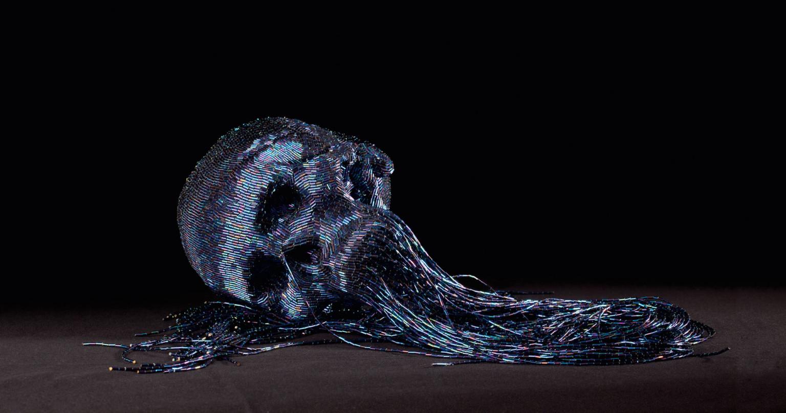 skull-6-768x404_2x.jpg