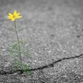 Válaszolj szeretettel az igazságtalanságra, ahogy Isten is akarja