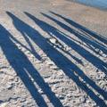 A négy embertípus, akire szükséged van az életben...