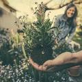 A házaspárok együttes szellemi növekedésének öt lehetséges módja