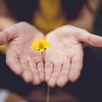 A bocsánatot nyert ember megbocsát másoknak
