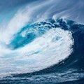 Hogyan állj szilárdan, ha állandóan változó szelek fújnak?
