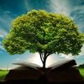 Amikor bölcsességre és erőre van szükséged, fordulj Istenhez!