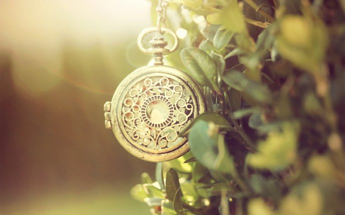8776_old-pocket-watch-in-a-tree-macro-hd-wallpaper.jpg