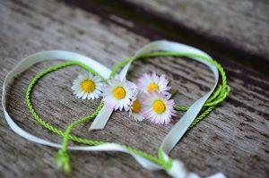 daisy_heart_ribbon.JPG