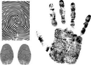 fingerprint-vector-3-4533.jpg