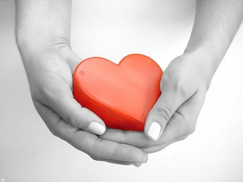 heart-in-hand1.jpg