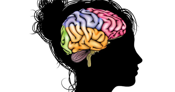 illustration_of_a_woman_in_profile_with_a_colorful_brain_social_image.jpg