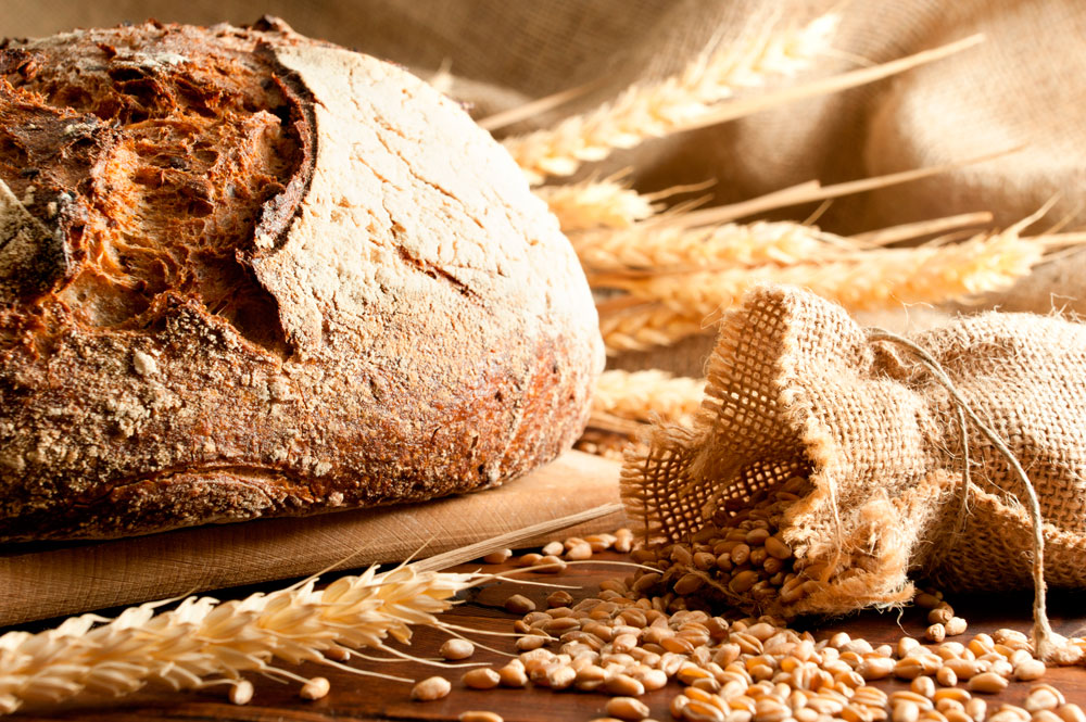 our_daily_bread_05.jpg