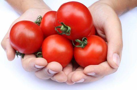 tomatoes_health_23.jpg