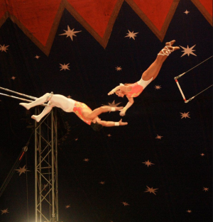 trapeze_artists.PNG