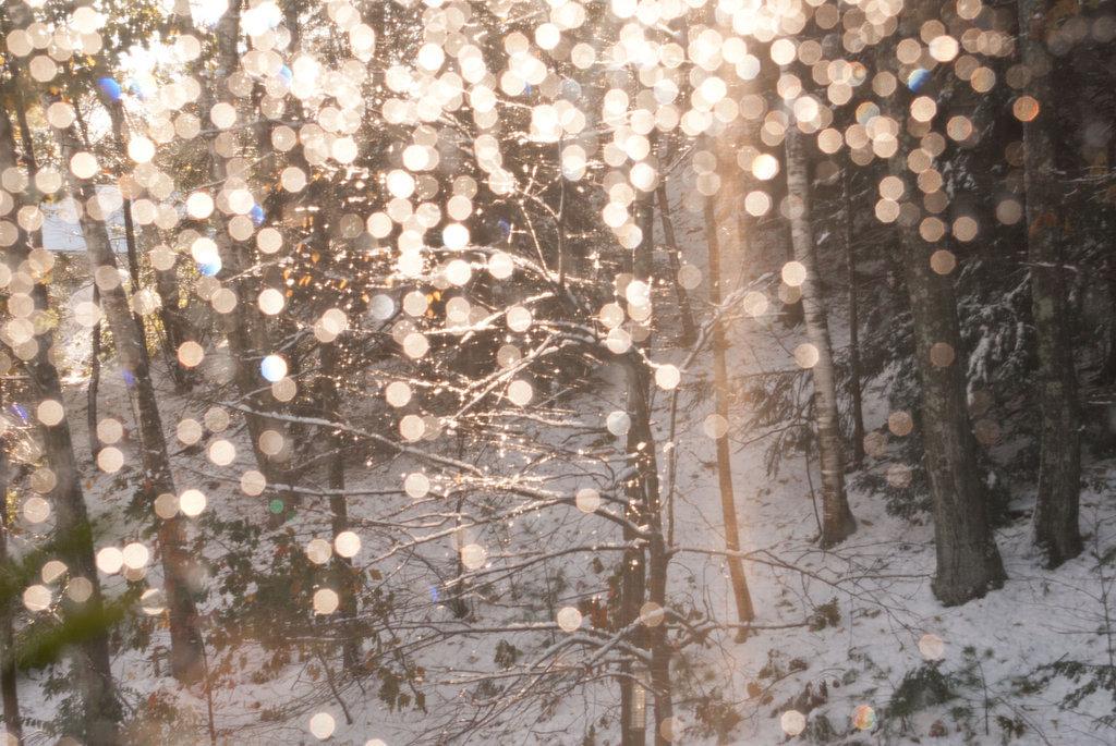 tumblr_static_beautiful-fairy-lights-winter-favim_com-275869-2665.jpg