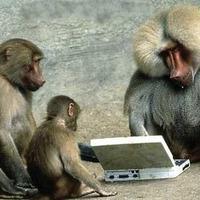 Végtelen sok majom és írógép