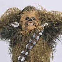 Szépségverseny, világbéke, Chewbacca