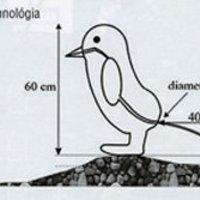 Pingvinfing