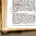 Kollázs a Ponyvaregény Biblia-idézete