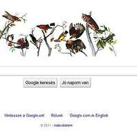 Miért vannak madarak a Google logójában?