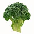 Az univerzális brokkoli