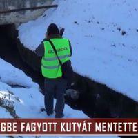 Kutyamentés magyar módra