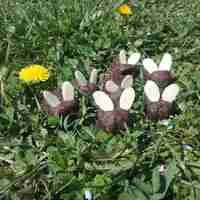 Vegán húsvéti csokinyuszi