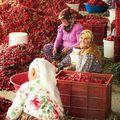 Ahol májas kebab és bárányleves a reggeli - utazás az ezerszínű Délkelet-Törökországba
