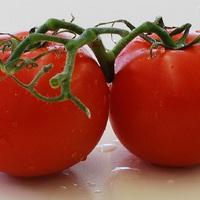 Paradicsom - főzve még egészségesebb, legegyszerűbb befőzési tipp
