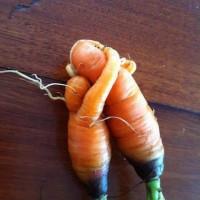 Szépségápolás a spájzból 1 . zöldségek