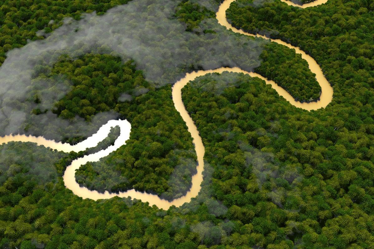 amazonas-07.jpg