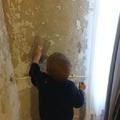 Hogyan újítsunk fel egy lakást egy 2 éves segítségével?