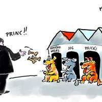 PRINC(z)eltetés