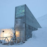 Magtár Norvégiában
