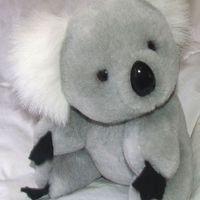 Fatörzs helyett alvázcsőbe kapaszkodva utazott a kis koala