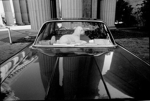 Neal White, 1970