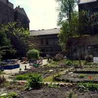 A fővárosiaktól sem áll távol a kertészet