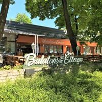 Balatonfüred szívében, századfordulós falak között - Balaton Étterem