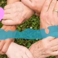 Önkéntesség a Balatonon