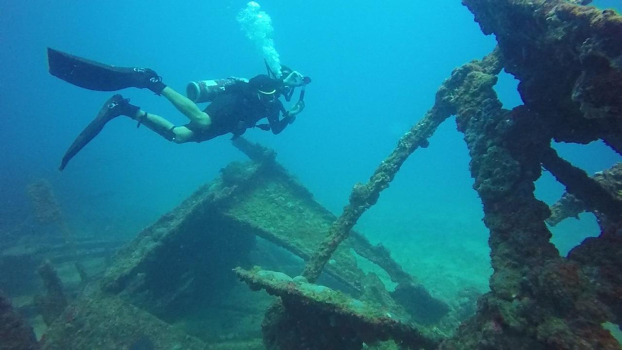diving-1186614_1280.jpg