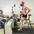 Terhelésélettani labor 2017 - A szétterített fájdalom