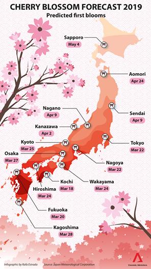 cherry_blossom_dates_japan_2019.png