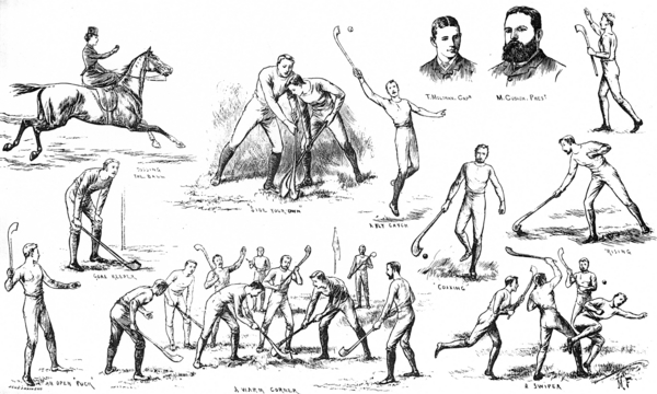 hurling-depicted-in-the-illustrated-sporting-and-dramatic-news-1884.jpg