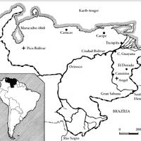 TÚL NAGY A VILÁG - 8. fejezet, Venezuela, 2. rész