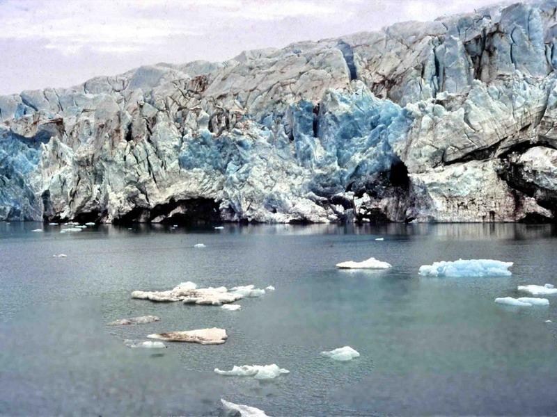 nordenskjold3.jpg