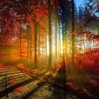 Itt van az ősz, itt van újra...