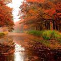 Ősszel megjelenik...