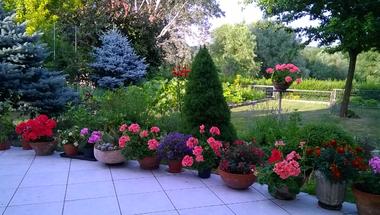 Ha van egy kert…