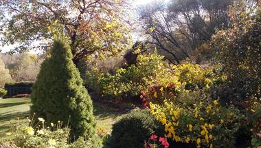Október végi napsütés