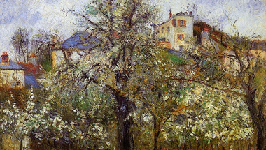 Vegetable Garden with Trees in Blossom