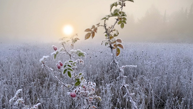 The Winter Solstice is the shortest day