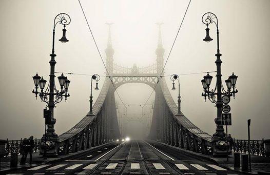 Boldogan mentem a ködben, és ezt gondoltam.jpg